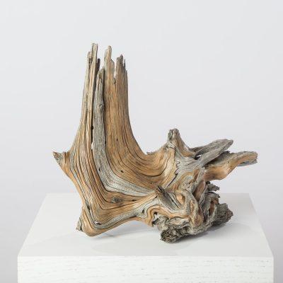 Revealing Rhythms in Wood